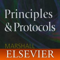 On Call Principles & Protocols