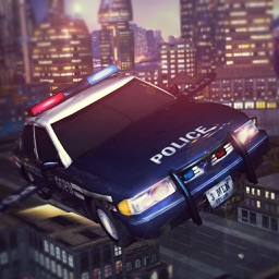 Sports Police Flying Car