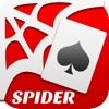 Spider Solitaire 蜘蛛纸牌