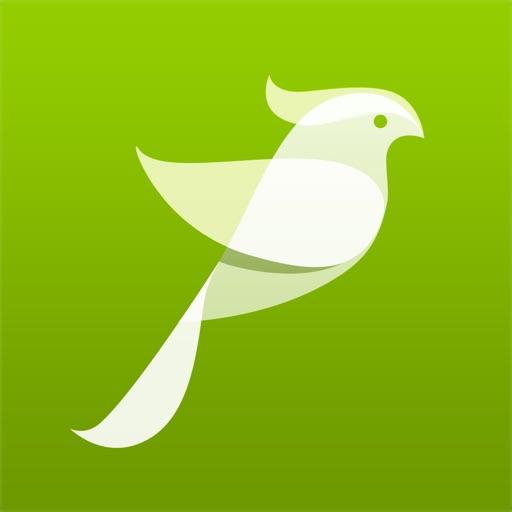 Bird Sounds, Listen & Relax