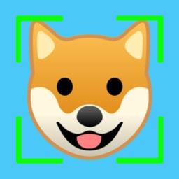SpiritDog - What Dog Are You?