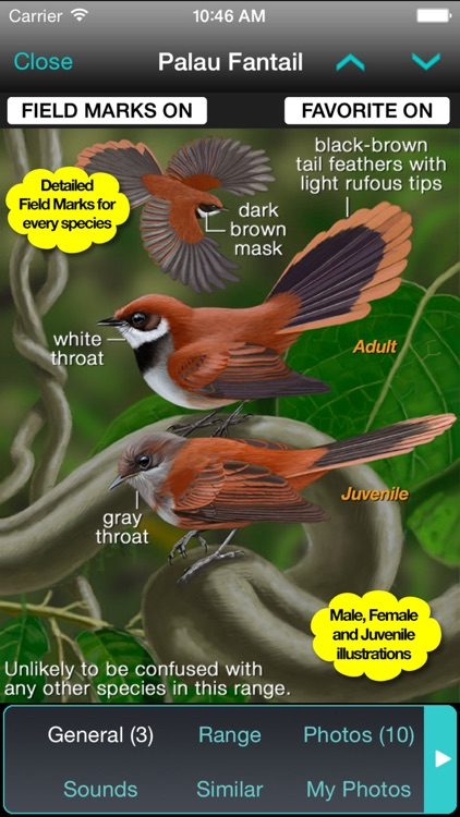 iBird Hawaii & Palau Guide screenshot-1