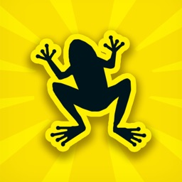 Skipping Frog