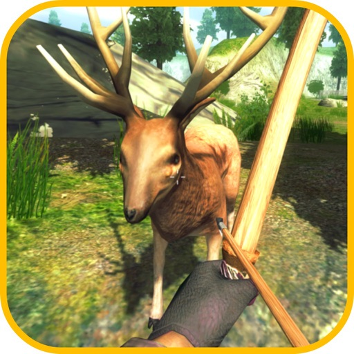 Wild Deer - Archery Shooting
