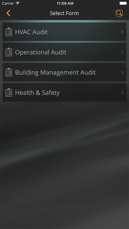 eAudit screenshot-2