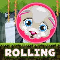 Codes for Rolling Rush - Endless Adventure Hack