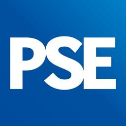 Public Sector Executive