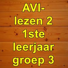Activities of AVIlezen2