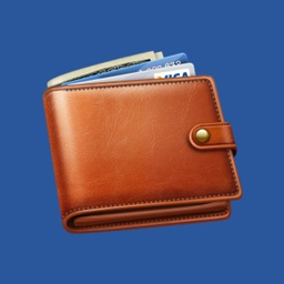 Budget Flow 5-Expenses, Income