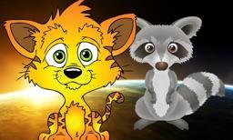 Cat vs Raccoon HD