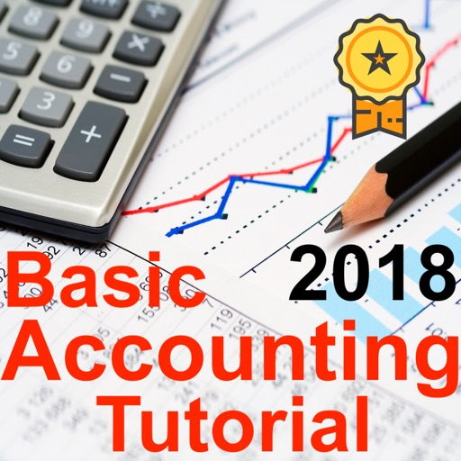 Pro Accounting Tutorial Course