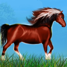 Horse Poney Wild Agility Race : The forest dangerous path - Free Edition