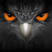 Eagleeyes Plus app review