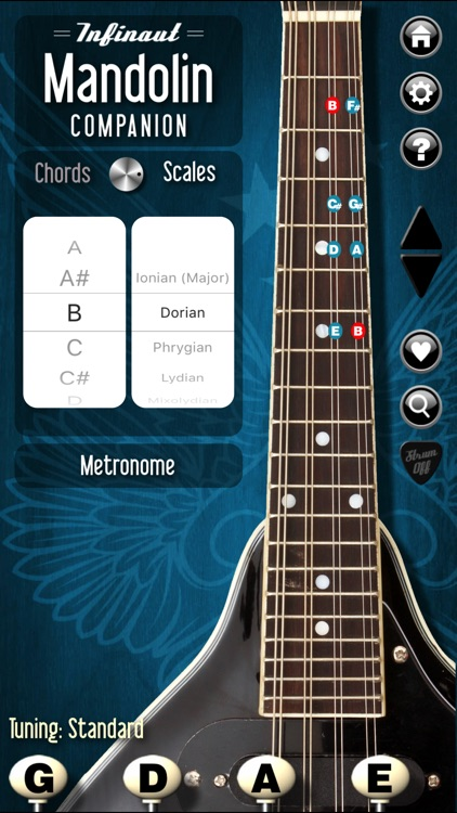 Mandolin Companion screenshot-1