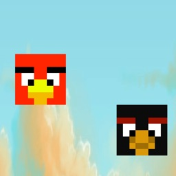 Flappy Duel