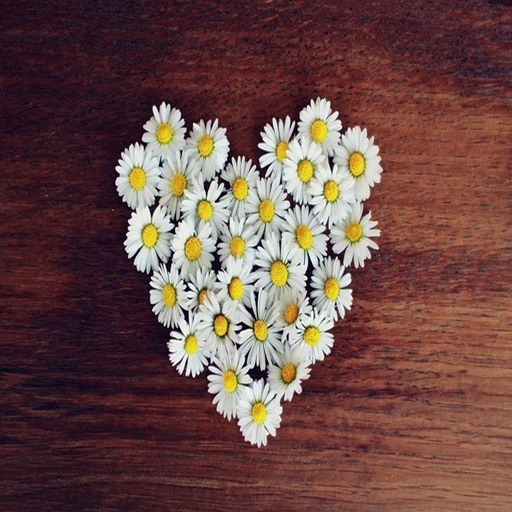 Daisy Hearts Sticker Pack