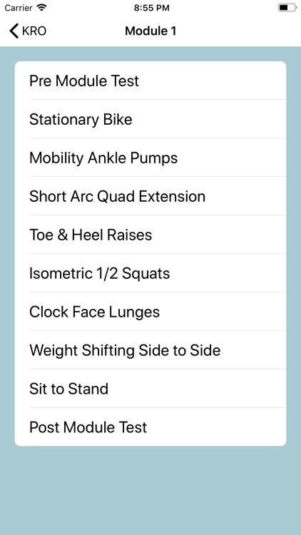 Knee Rehabilitation Online screenshot-1