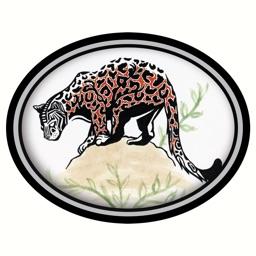 Fauna: Animal Brooches