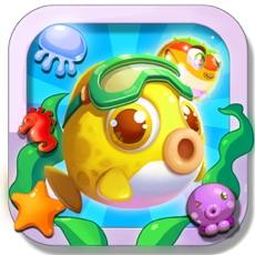 Activities of Sea Fish Match