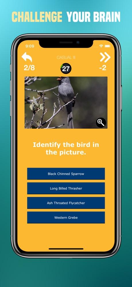 Birds Quiz – Birding Trivia