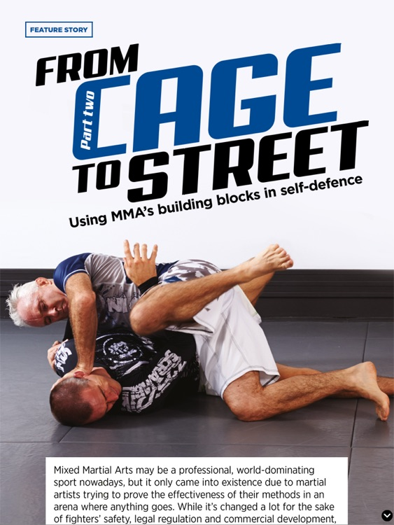 BLITZ Martial Arts Magazine screenshot-3