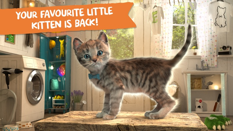 Little Kitten Adventures screenshot-0