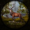 Jungle Animal Hunter Pro 2017