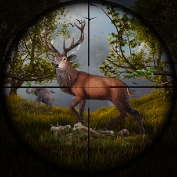 Jungle Animal Hunter Pro 2017