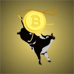 CryptoCraze - Bitcoin Stickers