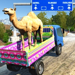 Eid Animals Transport Truck