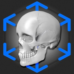 AR Anatomy: Skeleton