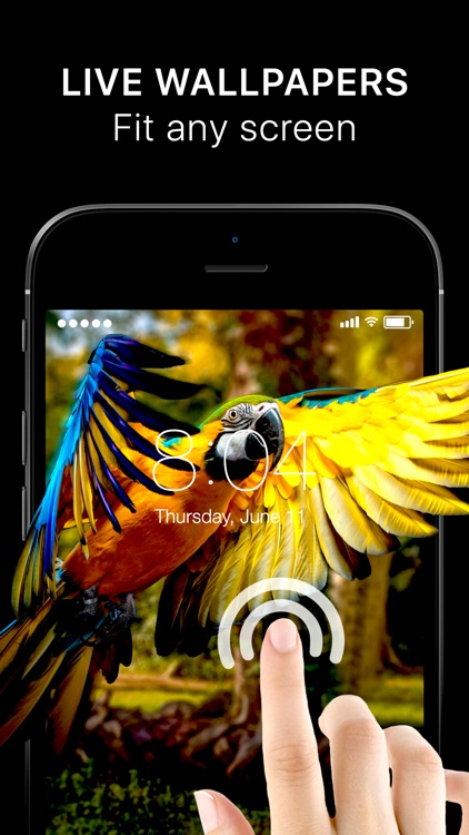 Live Wallpapers Hot Themes By Funberry