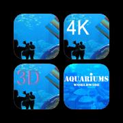 Aquarium Video Bundle