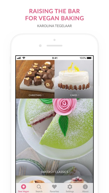 Swedish Vegan Dessert Recipes screenshot-0