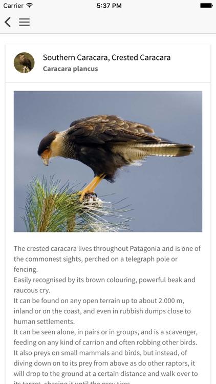 Birds of Patagonia screenshot-3