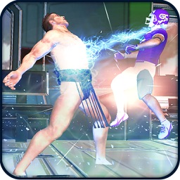 Karate Street Crime Fighter 3D