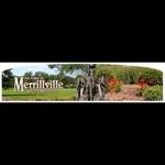 Merrillville Reporter