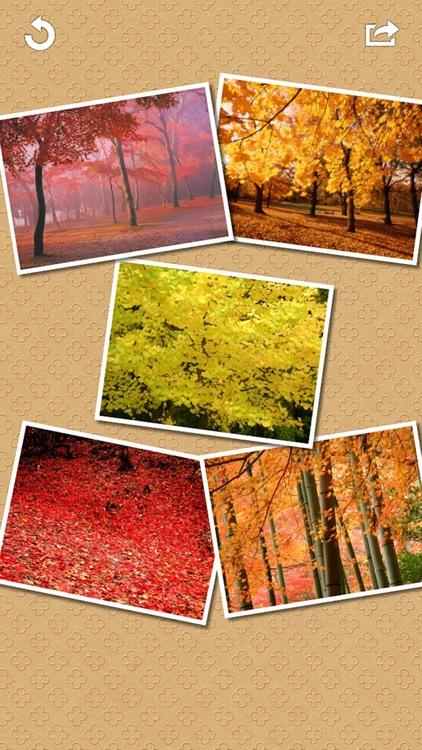 Frame Collage screenshot-4