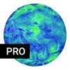 Earth Weather Live Pro