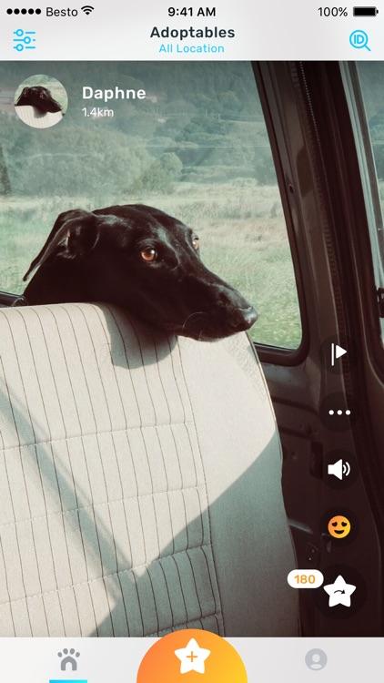 Besto: Get Pets Adopted