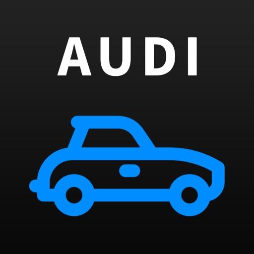 OBD-2 Audi by Rauza Tleuova