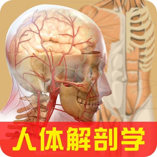 3Dbody解剖学-2018版人体解剖学图谱测试