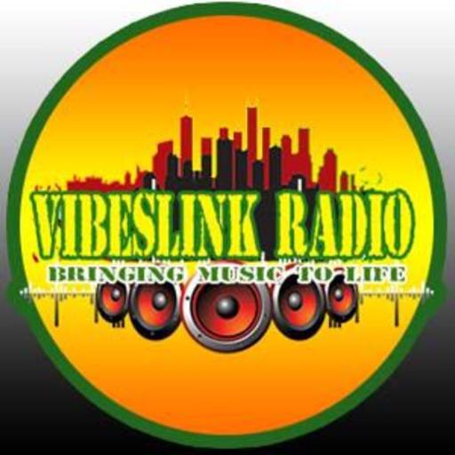 VibesLink Radio Pro