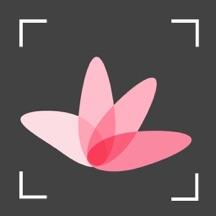 植物识别-春行色影识花神器