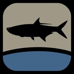 Fish the Gulf