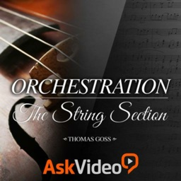 Orchestration String Section