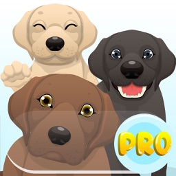 Labrador Emoji Pro