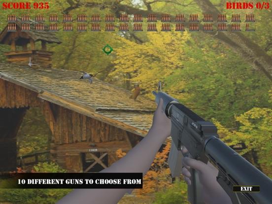Wild Bird Hunter America screenshot 6
