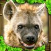 Hyena Simulator