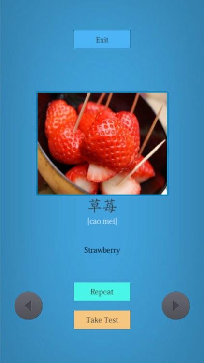 Learn Chinese Easily screenshot-3